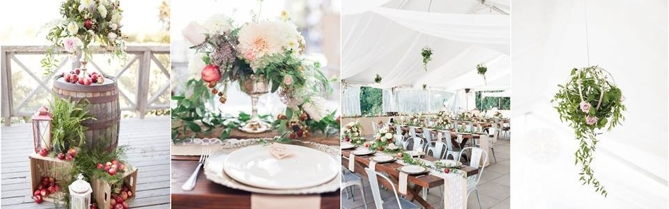 rustic orchard wedding seacider winery