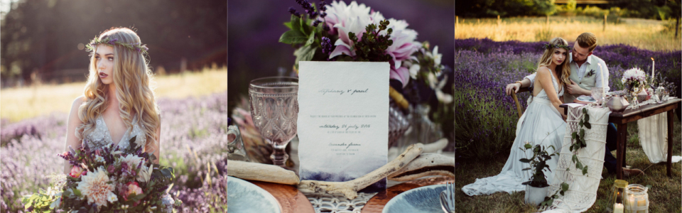 lavender-shoot-2